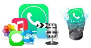 Backup iPhone WhatsApp Data